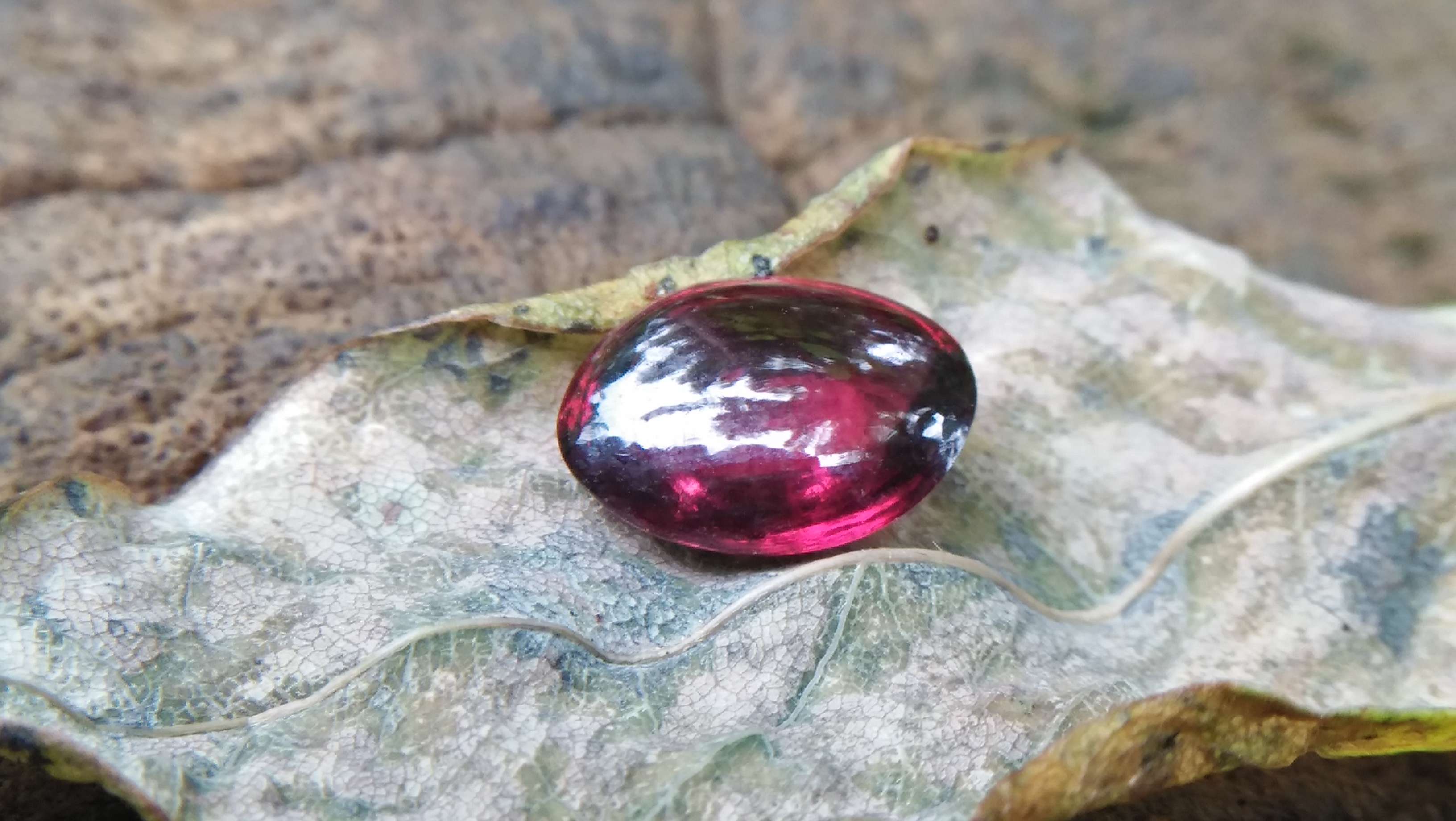 Ceylon Natural Rhodolite Garnet Cabochon Eye 👀 Weight: 2.05Cts Dimension: 9.1mm x 6.9mm x 3.5mm Mineral: Ratapura, Sri Lanka Clarity: Very Clean Colour: Pinkish Red Birthstone: June birthstone Rhodolite is a varietal name for rose-pink to red mineral pyrope, a species in the garnet group Mohs scale hardness: 7–7.5 Refractive index: 1.760