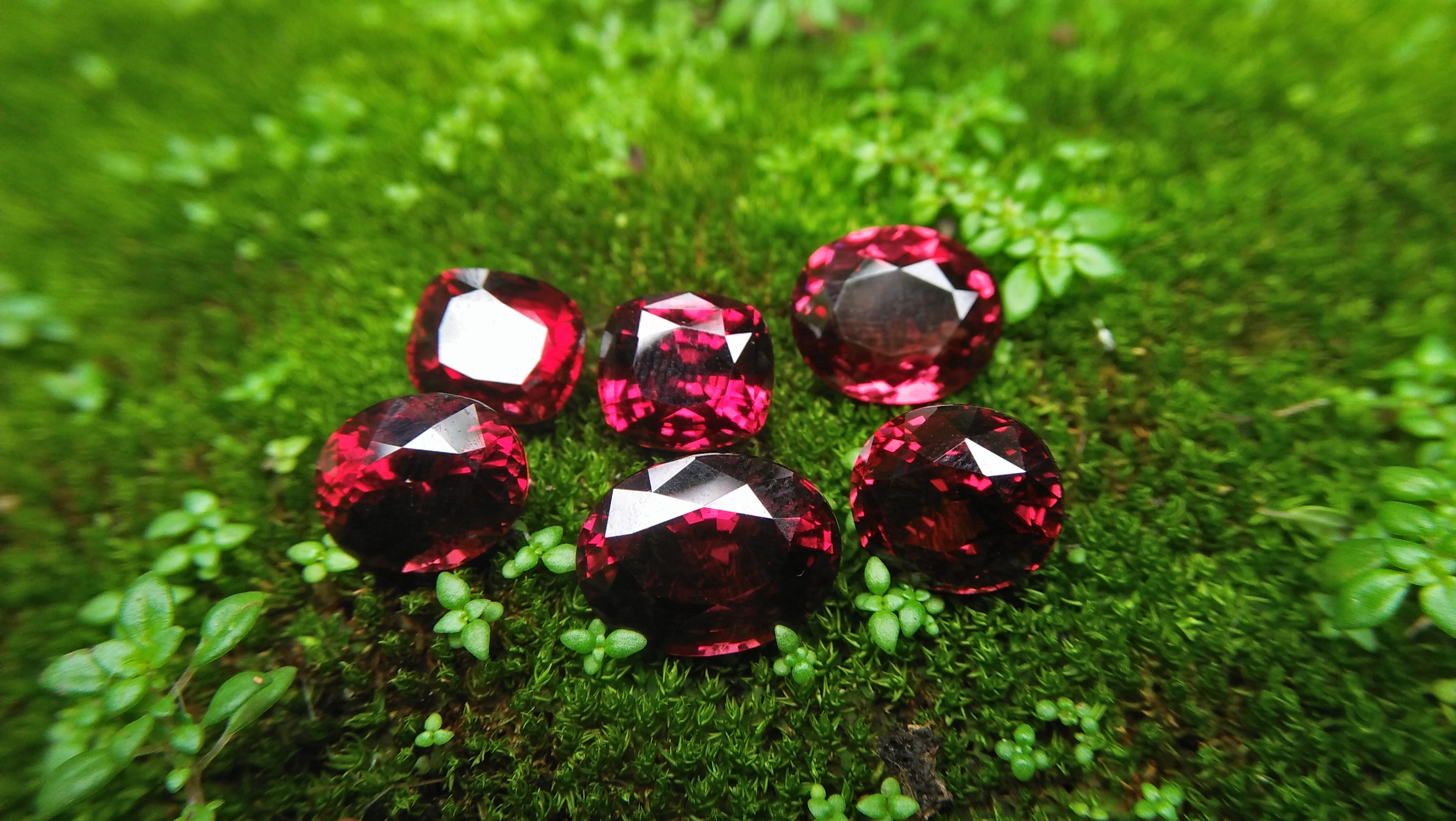 Ceylon Natural Rhodolite Garnets Dimension: 9.4mm x 8.2mm x 7.6mm/ 9.6mm x 8.8mm x 6.8mm 10mm x 8.7mm x 6.5mm/ 10.5mm x 9.4mm x 6.8mm 13mm x 9.8mm x 5.9mm/ 11.9mm / 10mm x 4.8mm Weights: 5.30cts/ 5.45cts/ 5.60cts/ 6.20cts/ 6.80cts/ 4.85cts Mineral: City of gem Ratnapurea Sri Lanka Shapes: Ovel and Cution Colour: Pinkish Red Pieces: 6 Treatment: NO Treatment/Unheated/Natural