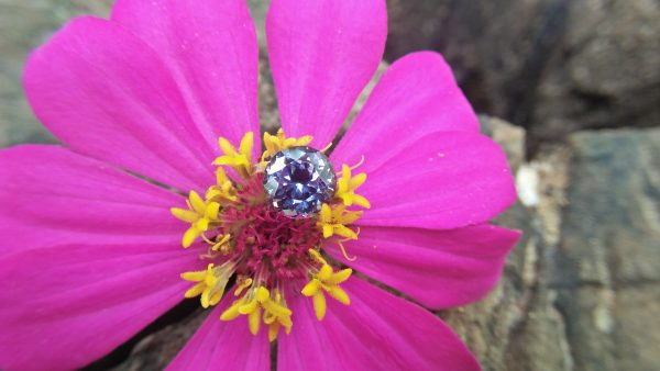 Natural Violetish Gray Spinel Shape : Round Cut : Round Flower Cut Clarity : SI Treatment : Natural/Unheated Dimension : 7.25 mm x 5.3 mm Weight : 2.05Cts Location : City of Gem Ratnapura Sri Lanka