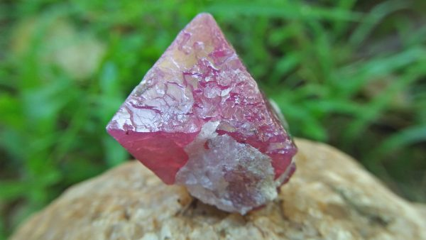 Natural Pink Spinel Crystal Specimen Weight : 113.30 Cts Fluorescence : Very good Fluorescence under UV light Treatment : None/ NaturalNatural Pink Spinel Crystal Specimen Weight : 113.30 Cts Fluorescence : Very good Fluorescence under UV light Treatment : None/ Natural