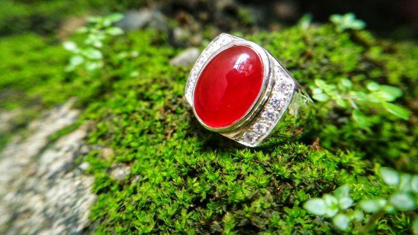 Metal : Silver Stone : Carnalian Type : Ring Weight : 11.85 g 红玉髓銀介指 宝石 :红玉髓 颜色 : 红色 透明 : 好透明 金属:银 重量:11.85 克