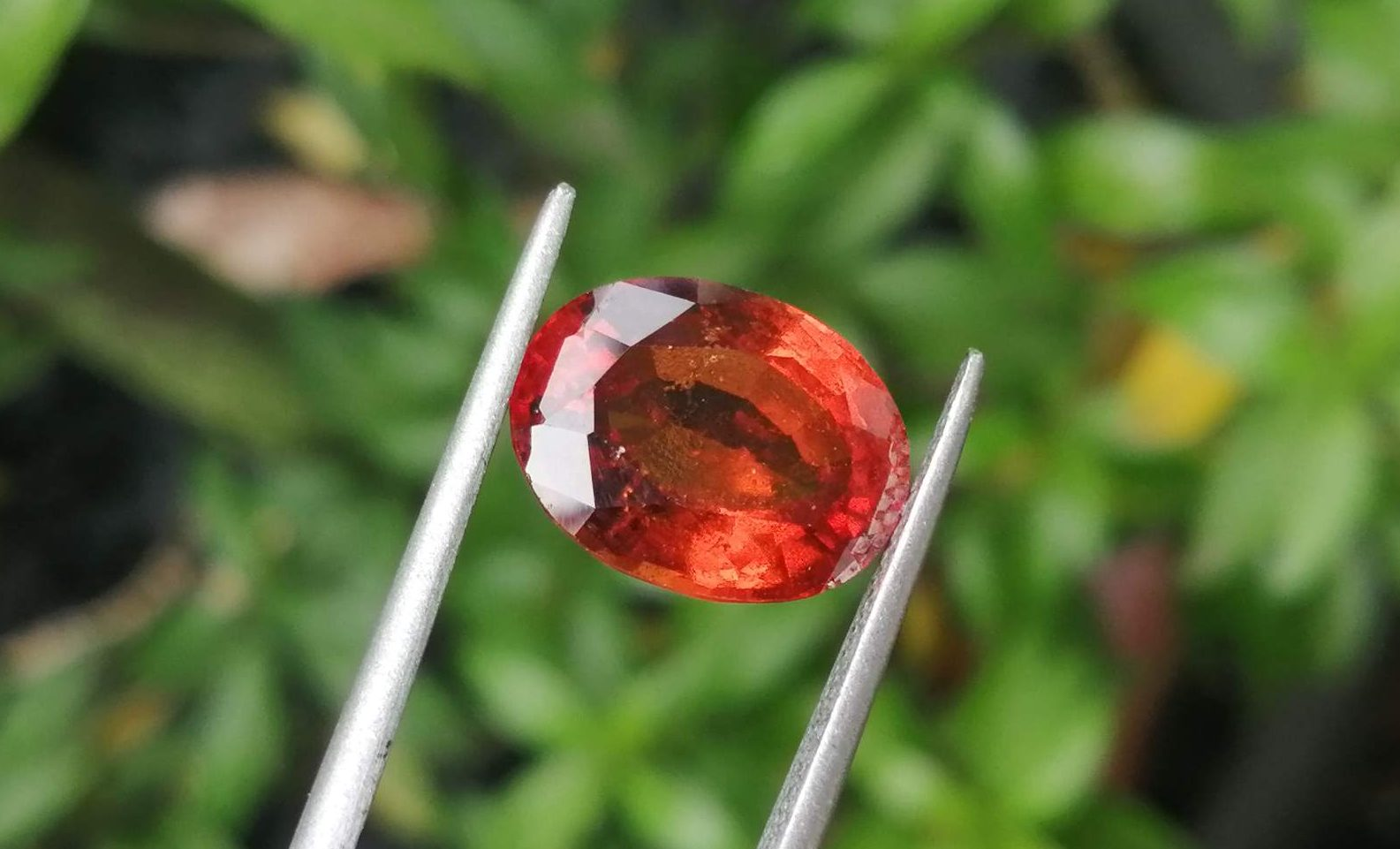 Ceylon Hessonite Garnet - Cinnamon Stone