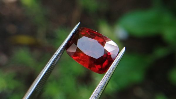 Hessonite Garnet - danu group