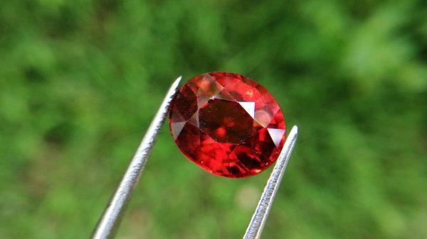 Hessonite Garnet - danu group