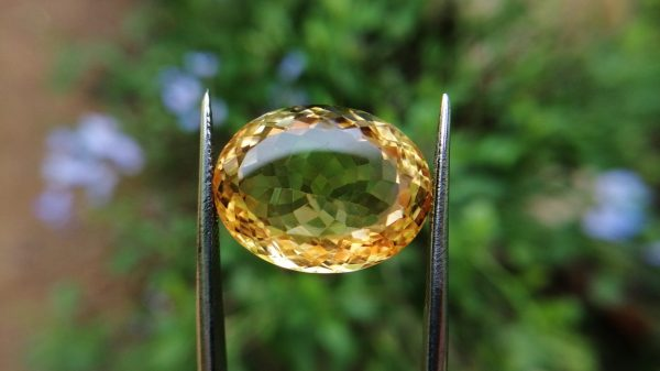 citrine gemstone danu group