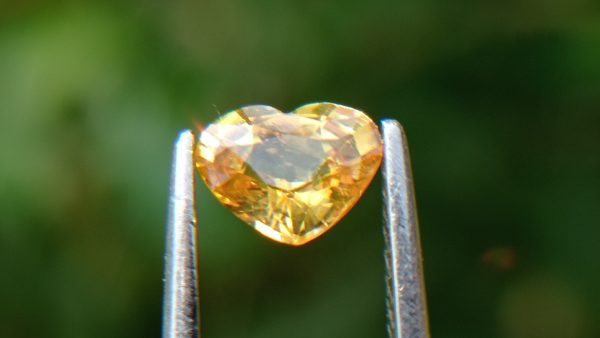 Ceylon Natural Yellow Sapphire from Danu Group Minings
