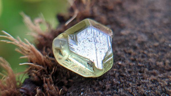 17_Rare Natural Chrysoberyl Crystal from Danu Group Gemstones Mining_compress19