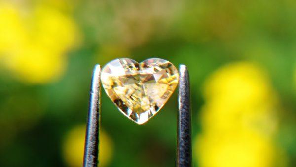 6_Natural light yellow Sapphire from Danu Group Gemstones