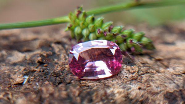 1_Natural Brilliance Pink Spinel from Sri Lanka -Danu Group Gemstones - lotus spinel
