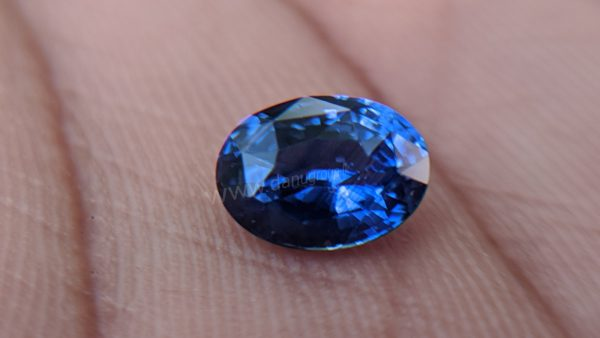 Ceylon Natural Royal Blue Sapphire Sri Lanka-Danu Group Minings