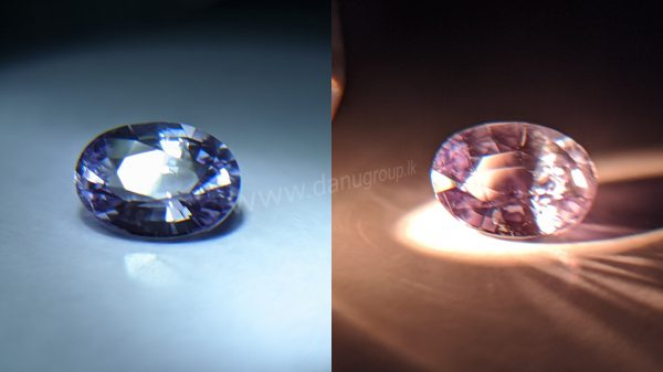 Ceylon Natural Colour Shifting Violet Sapphire from Danu Group Gemstones Collection