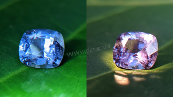 Ceylon Natural Color change Sapphire from Danu Group unique gem collection