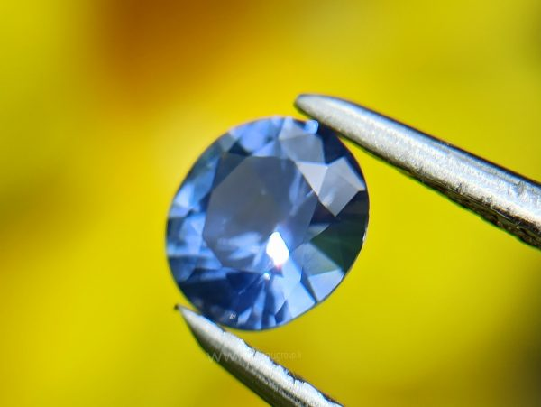 Ceylon Natural Blue Sapphire Couple from Danu Group Gemstones Collection