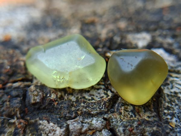 Ceylon Natural Chrysoberyl Alluvial Crystal Couple from Danu Group Gemstones Collection