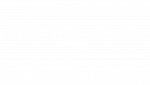 vision and mission of Danu Group Gemstones