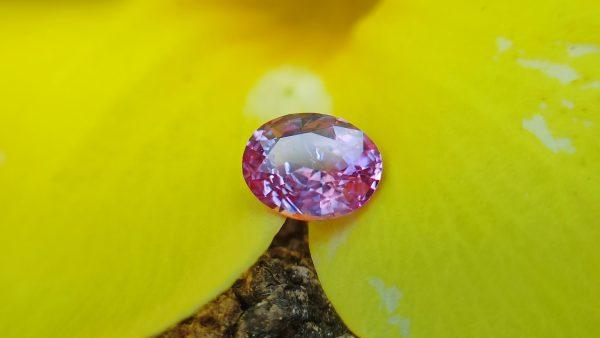danugroup.lk - ceylon Natural pink sapphire Danu Group Gemstones Collections