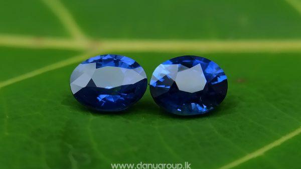 Ceylon Natural Vivid Royal Blue Sapphire Pair Danu Group Gemstones Collection - danugroup.lk