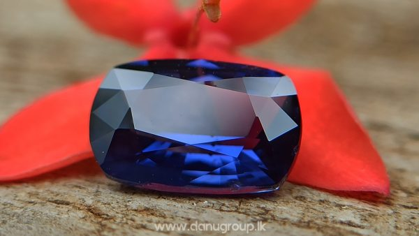 Ceylon Natural Vivid Royal Blue Sapphire Best Grade Unheated Gemstones - danugroup.lk