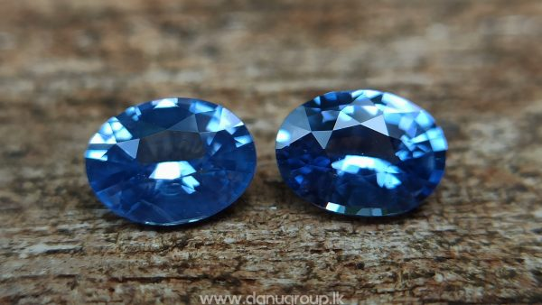 Ceylon Natural Blue Sapphire Pair for Earrings - danugroup.lk